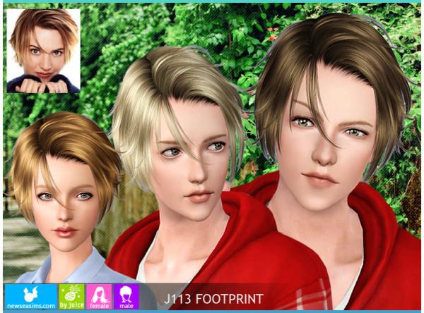Newsea J113 FootPrint