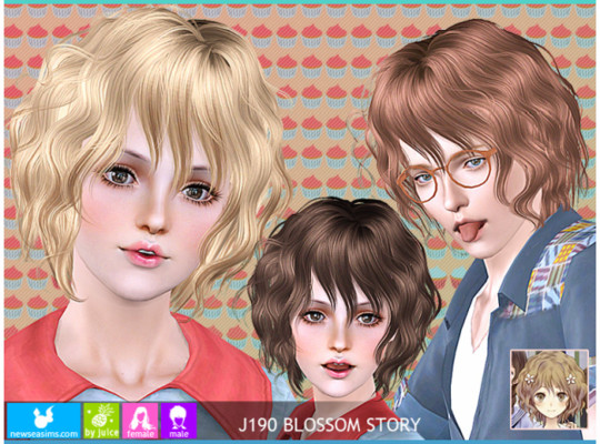 Newsea J190 BLOSSOM STORY